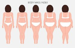 Human body anatomy_Body mass Index of European women from lack o. Vector illustration Human body mass Index, European woman from lack of weight to obesity. Back royalty free illustration