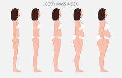Human body anatomy_Body mass Index of European women from lack o. Vector illustration Human body mass Index, European woman from lack of weight to obesity. Side royalty free illustration