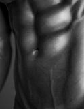 Human Body in Black and White Stock Photos