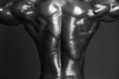 Human Body in Black and White Royalty Free Stock Photos