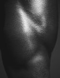 Human Body Close up Stock Image