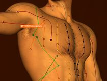 Acupuncture Point SP19 Xiongxiang, 3D Illustration, Brown Backgr stock image