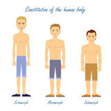 Human Body. Ectomorph. Mesomorph. Endomorph. Constitution of human body. Ectomorph. Mesomorph. Endomorph. Men in underwear cloth. Boysdifferent figures types Royalty Free Stock Photography