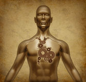 Human body grunge old document with heart valves m. Edical gears symbol blood flow pumping coronary circulation Royalty Free Stock Photo