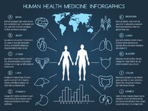 Human body health care infographics. Medical infographics in line style. Human body health care infographics vector illustration stock illustration