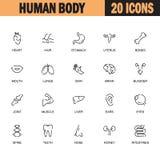 Human body icon set Royalty Free Stock Photo
