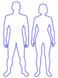 Human body. Illustration of the contour human body. Man and woman stock illustration