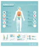 Human body infographics Royalty Free Stock Photo
