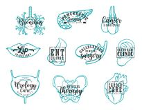 Human body organs, medical clinic lettering royalty free illustration