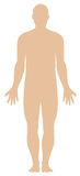 Human body outline royalty free stock photo