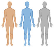 Free Human Body Outline In Three Colors Stock Images - 74438424