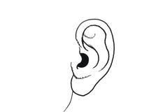 Human body parts full ear Illustration Royalty Free Stock Photos