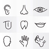 Human body parts. Set icons with flat parts of the human body ear nose eyes tongue teeth mouth lips head arm leg  foot Royalty Free Stock Images