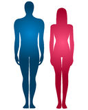 Human body silhouette. Male and female human body silhouette royalty free illustration
