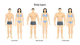 Human body types. Men and women as endomorph, ectomorph and mesomorph Royalty Free Stock Images