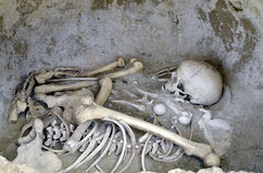 Human bones. In prehistoric burial stock photo