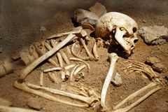 Human bones. Excavation: rests of human bones royalty free stock images