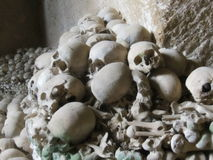 Human bones in Catacomb Stock Photo