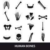 Human bones set of icons Royalty Free Stock Image