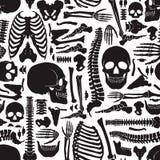 Human Bones Skeleton Pattern. Monochrome human skeleton seamless pattern with big skulls and various single bones flat vector illustration Stock Images