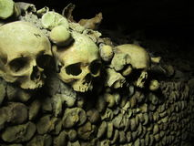 Human bones. Human skulls and bones in the catacombs of Paris, France royalty free stock photo