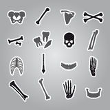 Human bones stickers set Stock Photography