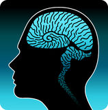 Human brain. Illustration art of a human brain with isolated background stock illustration