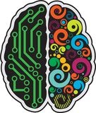 Human brain. Left and right part of human brain royalty free illustration