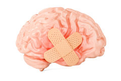 Human brain with adhesive plaster, 3D rendering. Isolated on white background Stock Photos