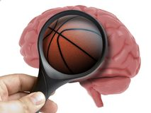 Human Brain Analyzed with magnifying glass basketball ball inside addiction isolated. On white vector illustration