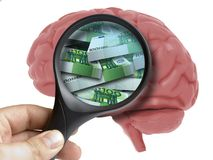 Human Brain Analyzed with magnifying glass pack of euro banknotes inside isolated. On white Stock Photo