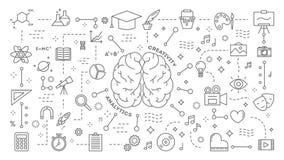 Human brain animation.