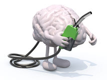 Human brain with arms, legs and fuel pump in hand Stock Photo