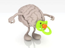Human brain with arms legs and pacifier Stock Photography