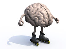 Human brain with arms, legs and rollerskates. 3d illustration Stock Image
