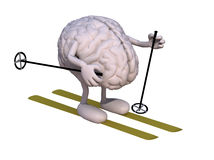 Human brain with arms and legs, ski and stick. 3d illustration Royalty Free Stock Image