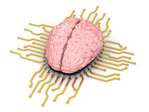 Human brain as computer chip. Concept of CPU. 3d stock illustration