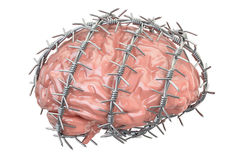 Human Brain with barbed wire. Freedom of thought prohibition con. Cept, 3D rendering on white background Royalty Free Stock Image