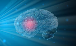 Human brain with blue background Stock Photo
