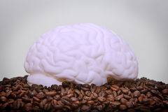 Human brain caffeine addiction. Human brain on coffee beans in this caffeine / addiction concept Royalty Free Stock Images