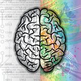 Human brain color pattern Stock Photography