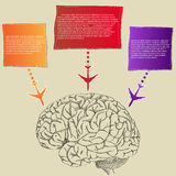 Human Brain with colorful Airplane Infographic banner Diagram for Business and Technology Concept. Vector Illustration EPS 10 Stock Images