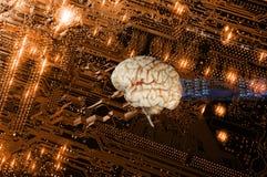 Human brain and communication Royalty Free Stock Photo