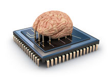 Human brain and computer chip. 3D concept Stock Images