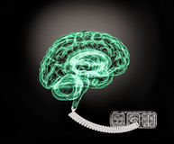 Human brain is connected to electric energy. Stock Image