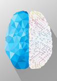 Human brain creative concept Stock Photo