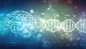 Digital illustration of Human brain structure, Creative brain concept background, stock illustration