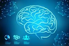 Digital illustration of Human brain structure, Creative brain concept background, innovation background. Human brain 2d illustration, Digital illustration of vector illustration