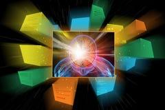 Human brain development concept. 3d illustration of human brain development concept Royalty Free Stock Photo