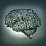 Human Brain - Digital Painting. Surreal digital painting of a human brain Stock Photo